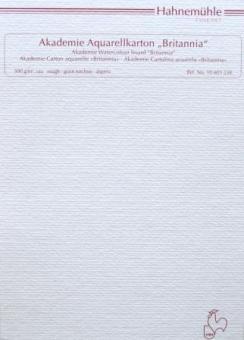 Hahnemühle FineArt Χαρτί Ακουαρέλας Rough Britannia 50x70 cm 300gr