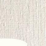 Canson Χαρτί για Λάδι και Ακρυλικό Figueras 50 x 70cm