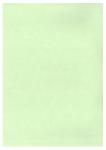 Πράσινο μέντας ριζόχαρτο 90 gr. Α4 10φ.