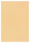 Σομόν ριζόχαρτο 90 gr. Α4 10φ.
